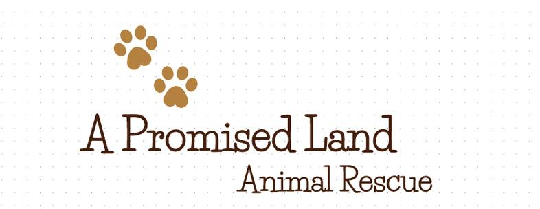A Promised Land Animal Rescue, INC. Logo