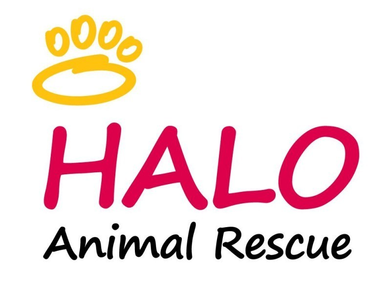HALO Animal Rescue Logo