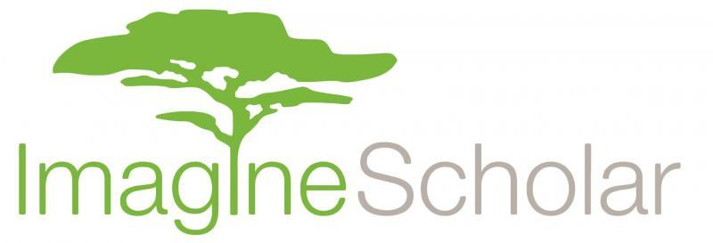 Imagine Scholar Logo