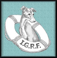 Italian Greyhound Rescue Foundation Inc Logo