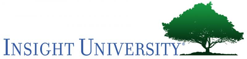 Insight University Logo