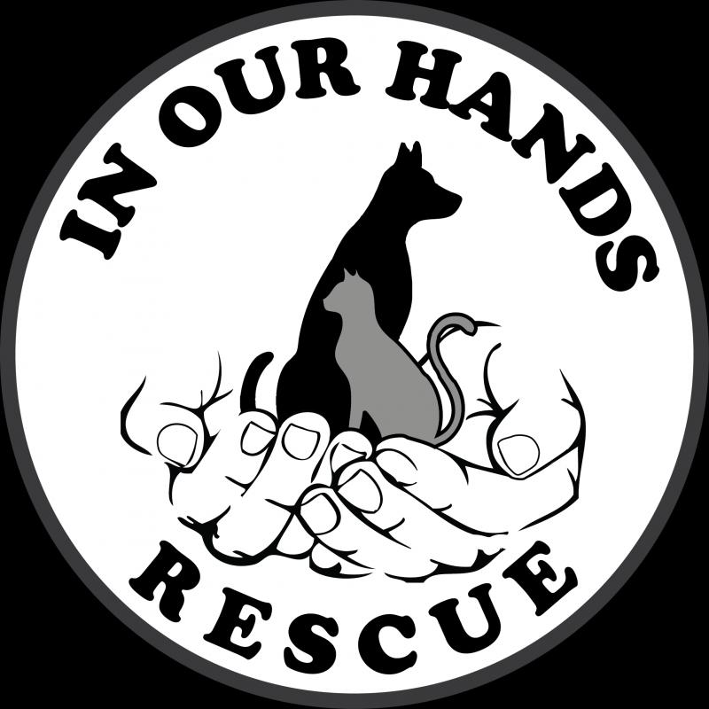 In Our Hands Rescue Logo