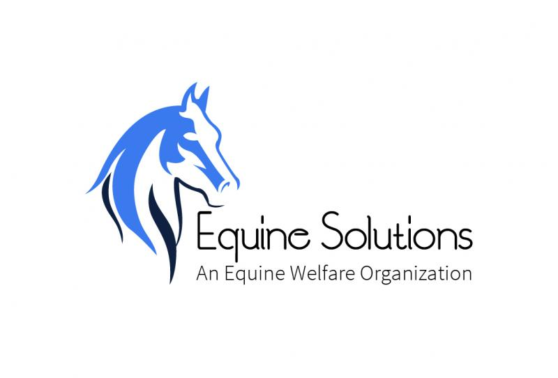 EQUINE SOLUTIONS INC Logo