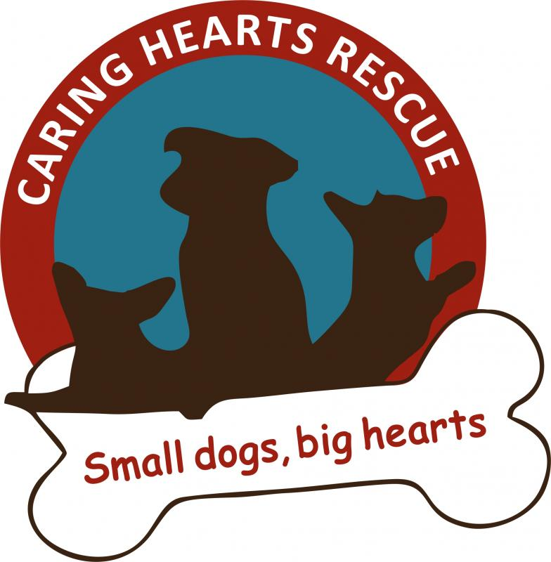 Caring Hearts Rescue Logo