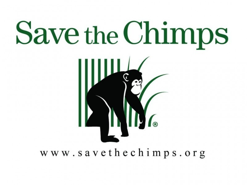 SAVE THE CHIMPS Logo