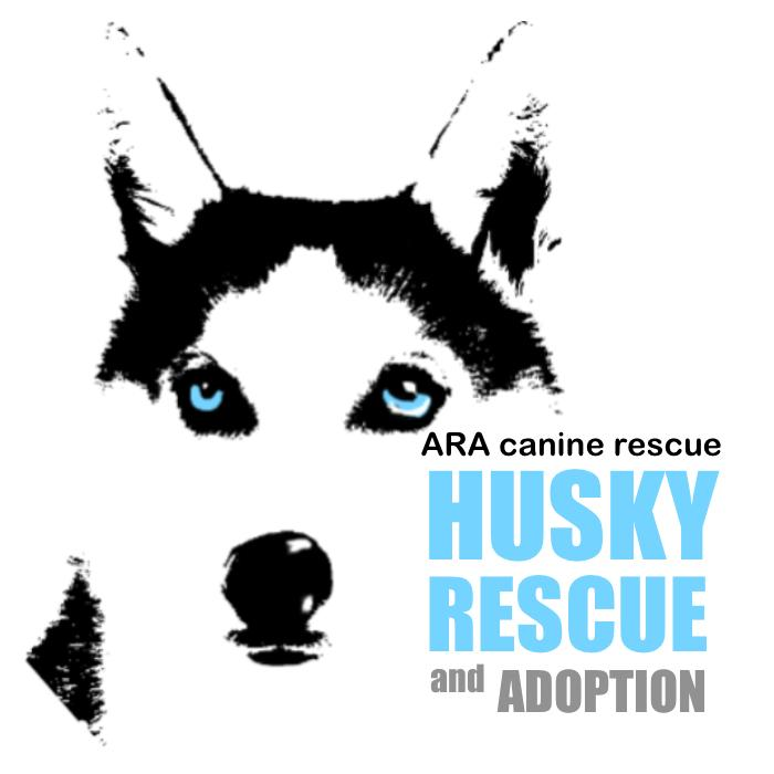 ARA Canine Rescue Inc. dba Alleys Rescued Angels Logo