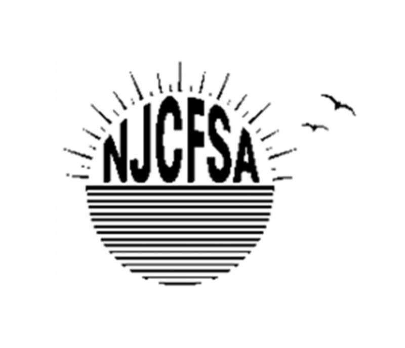 New Jersey Chronic Fatigue Syndrome Association Inc. (NJCFSA) Logo