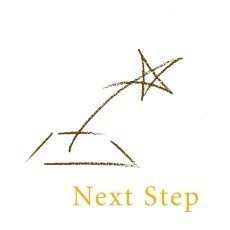 The Next Step Fund, Inc. Logo