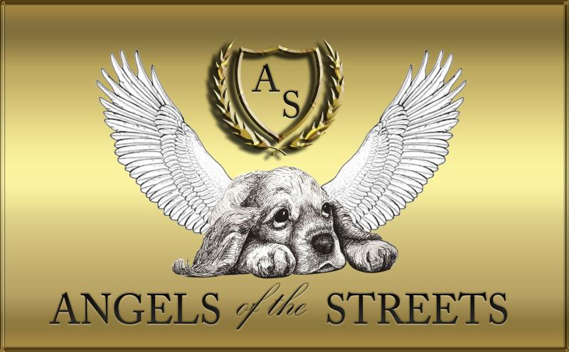 Angels of the Streets Logo