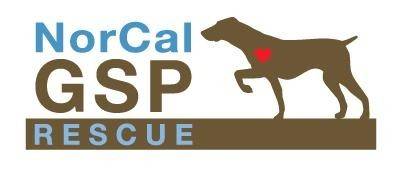 Norcal German Shorthaired Pointer Rescue Inc Logo