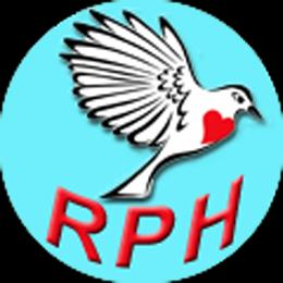 the ROBIN Project Logo