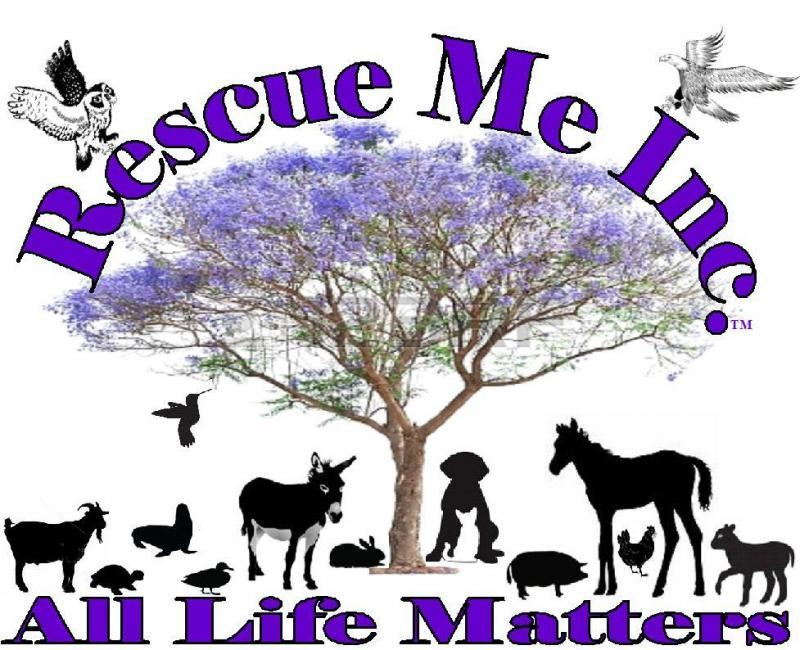Rescue Me Corporation Logo