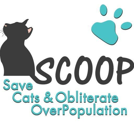 Save Cats and Obliterate Overpopulation Logo