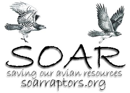 Saving Our Avian Resources S O A R Logo
