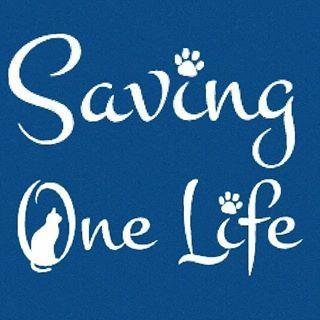 Saving One Life Logo