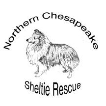 NORTHERN CHESAPEAKE SHELTIE RESCUE Logo