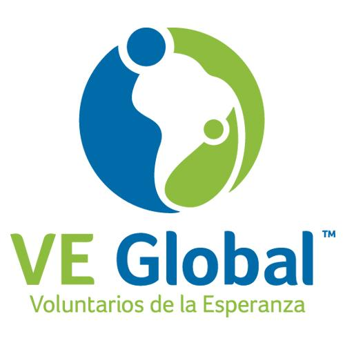 VE Global Logo