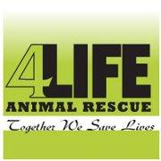4Life Animal Rescue Logo