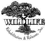 Wildlife Rehabilitation & Release Logo