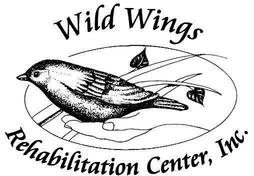 Wild Wings Rehabilitation Center Inc Logo