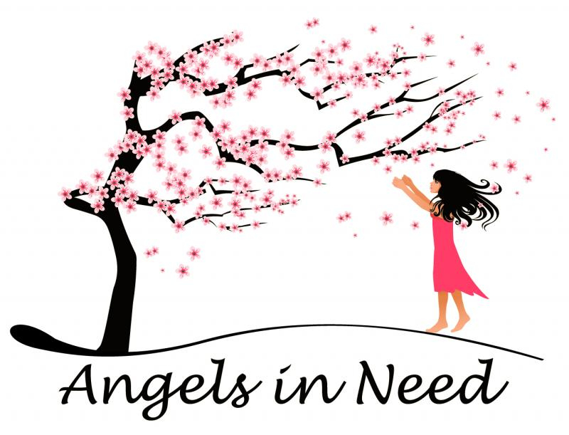 Angels in Need Inc Logo