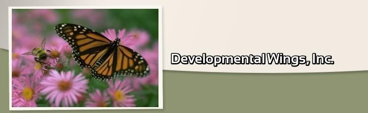 Developmental Wings Inc Logo