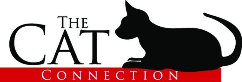 Cat Connection Logo
