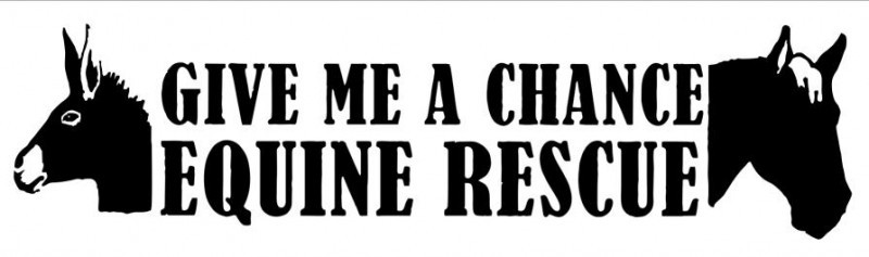 GIVE ME A CHANCE EQUINE RESCUE Logo