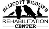 Ellicott Wildlife Rehabilitation Center Logo