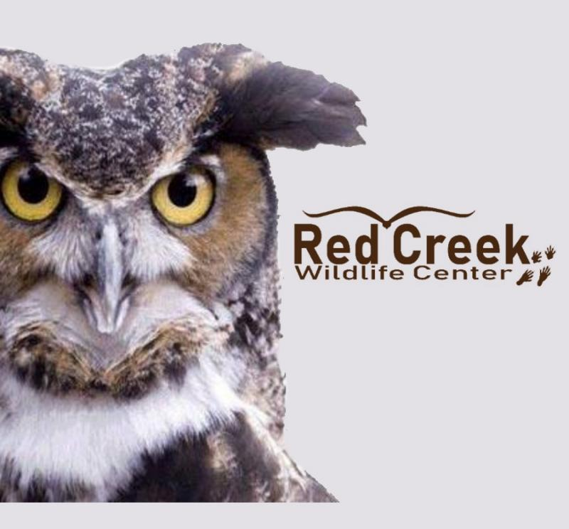 Red Creek Wildlife Center Inc Logo