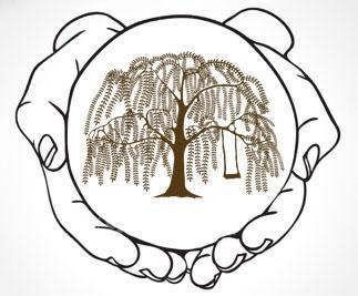 Friends Of Willow Tree Logo