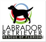 LABRADOR RETRIEVER RESCUE OF FLORIDA INC Logo