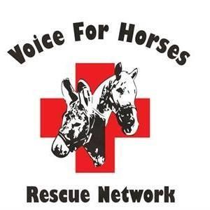 Voice for Horses Rescue Network Logo