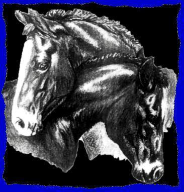 Florida Research Institute for Equine Nurturing Development & Safety, Inc. aka F.R.I.E.N.D.S. Horse Rescue Logo