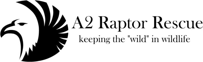 A2 Raptor Rescue Logo