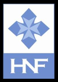 Haiti Nursing Foundation Logo