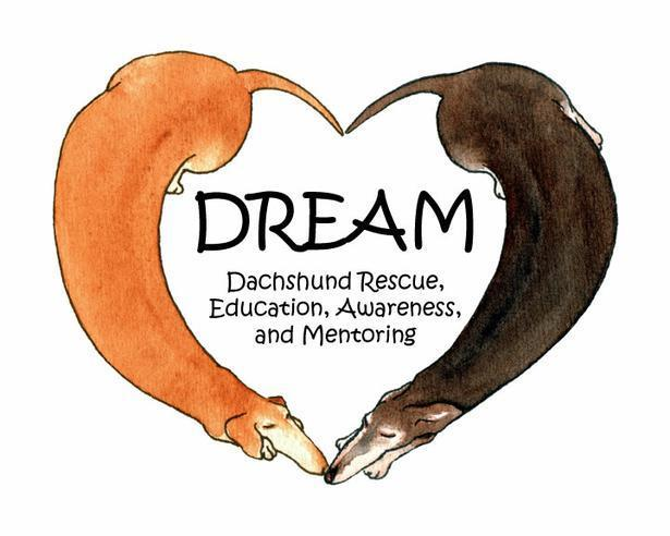 DREAM Dachshund Rescue Atlanta, Georgia Logo