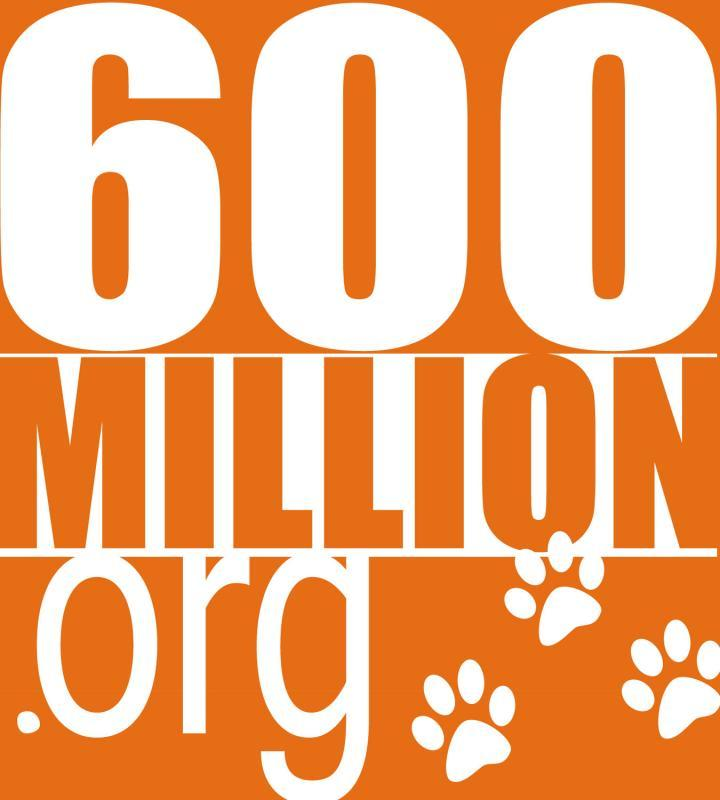 600 Million Stray Dogs Need You Logo