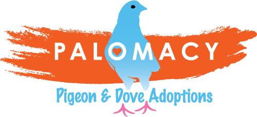 Palomacy Pigeon & Dove Adoptions Logo