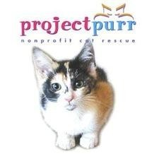 Project Purr Logo