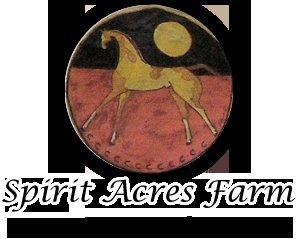 Spirit Acres Farm Equine Rescue and Sanctuary Logo
