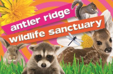 Antler Ridge Wildlife Sanctuary Logo