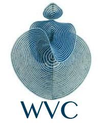 WOMEN'S VISIONARY CONGRESS Logo
