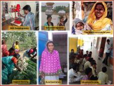 India Development and Relief Fund Inc