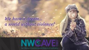 National Womens Coalition Against Violence & Exploitation