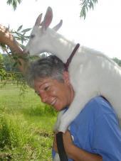 Catskill Animal Sanctuary Reviews and Ratings | Saugerties