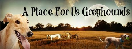 A PLACE FOR US GREYHOUND RESCUE