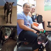 JACKSONVILLE HUMANE SOCIETY Reviews and Ratings
