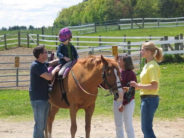 Strongwater Farm Therapeutic Equestrian Center Reviews And