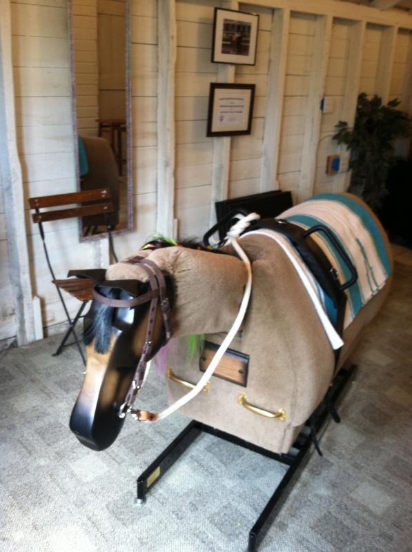 Borrowed Freedom Equine Assisted Therapies And Activities